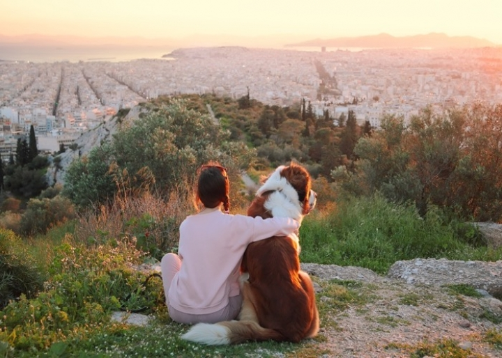 A pet friendly city - credits: Katerina Planina/Shutterstock.com